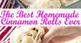 The Best Homemade Cinnamon Rolls Ever – Cook zone Lovers - Cook zone Lovers